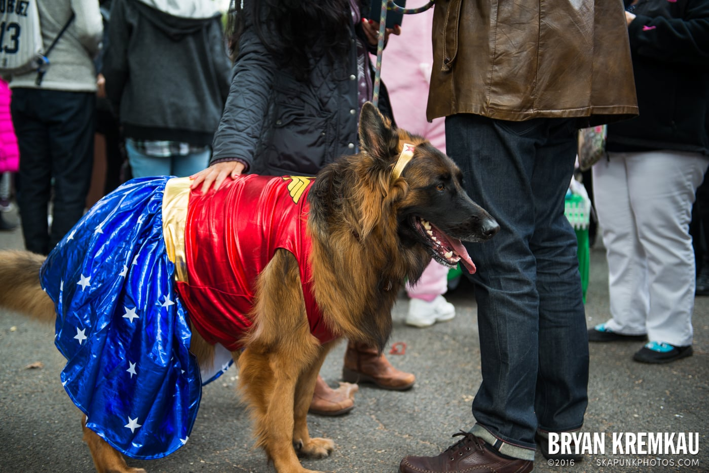 Tompkins Square Halloween Dog Parade 2015 @ Tompkins Square Park, NYC – 10.24.15 (42)