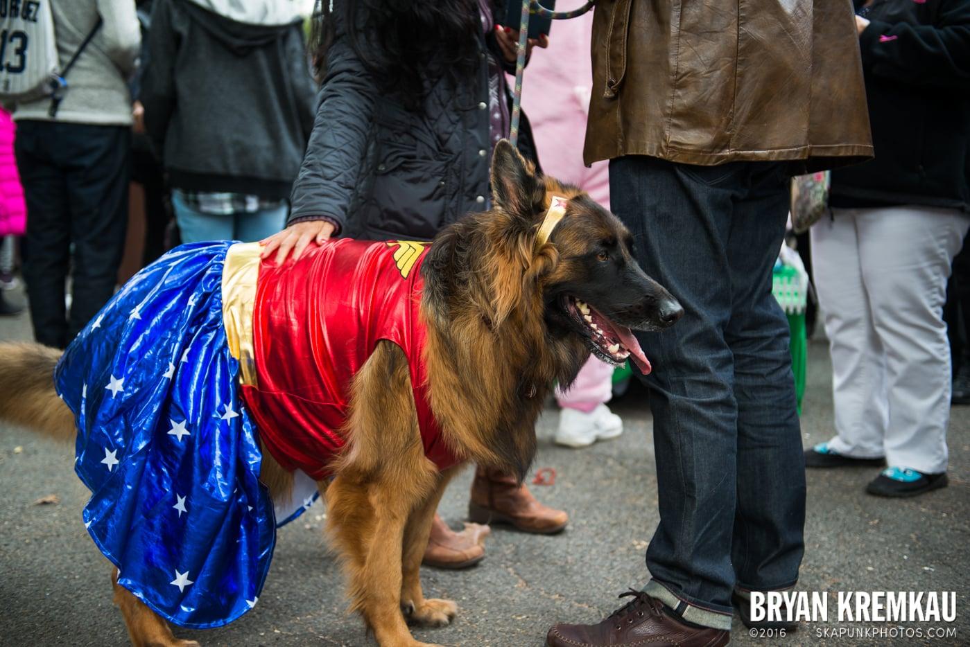 Tompkins Square Halloween Dog Parade 2015 @ Tompkins Square Park, NYC – 10.24.15 (42)