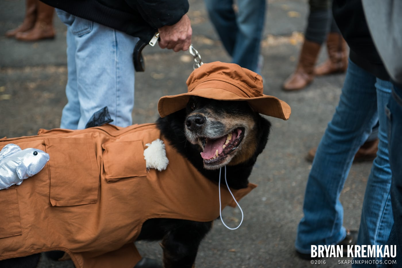 Tompkins Square Halloween Dog Parade 2015 @ Tompkins Square Park, NYC – 10.24.15 (40)