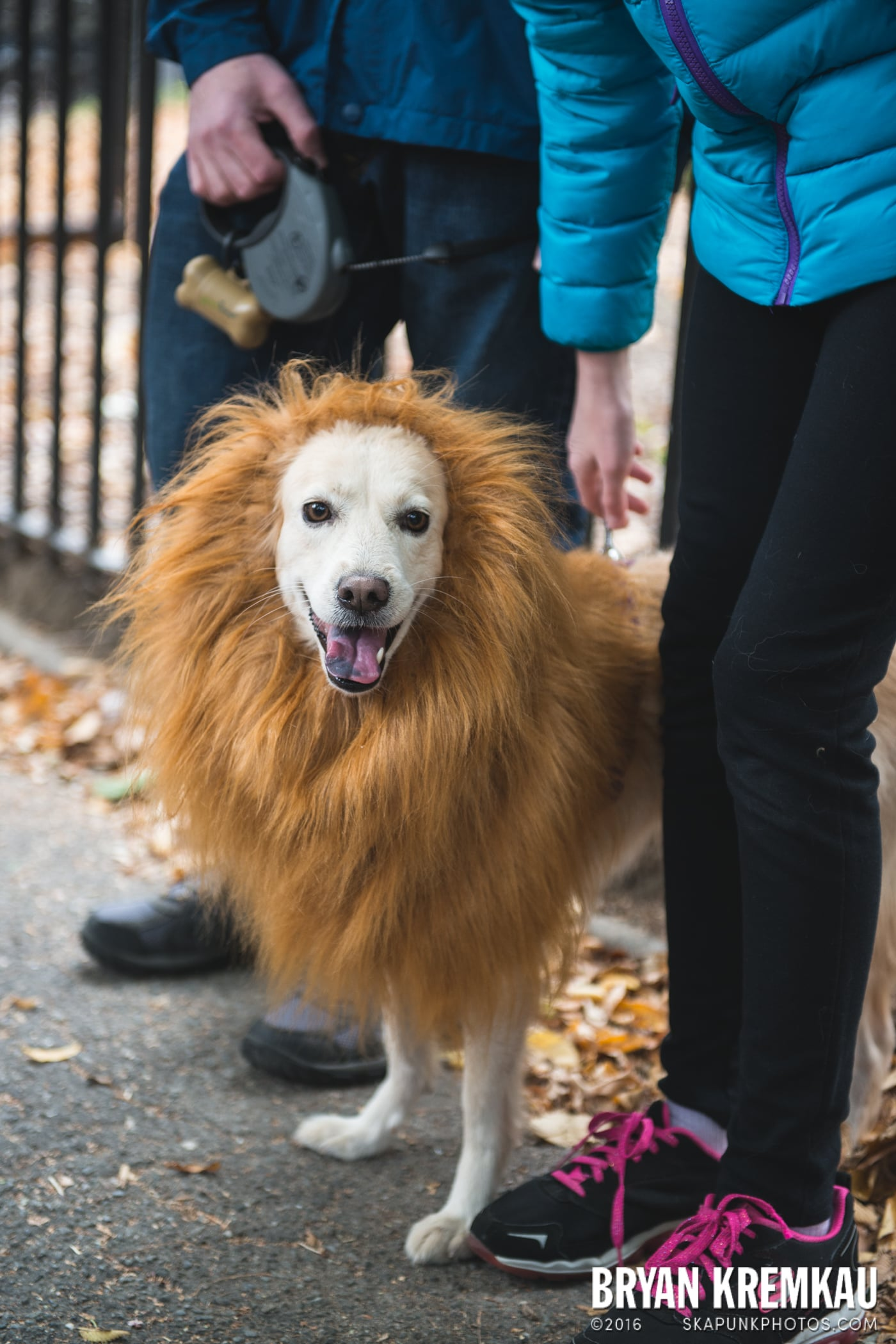 Tompkins Square Halloween Dog Parade 2015 @ Tompkins Square Park, NYC – 10.24.15 (31)