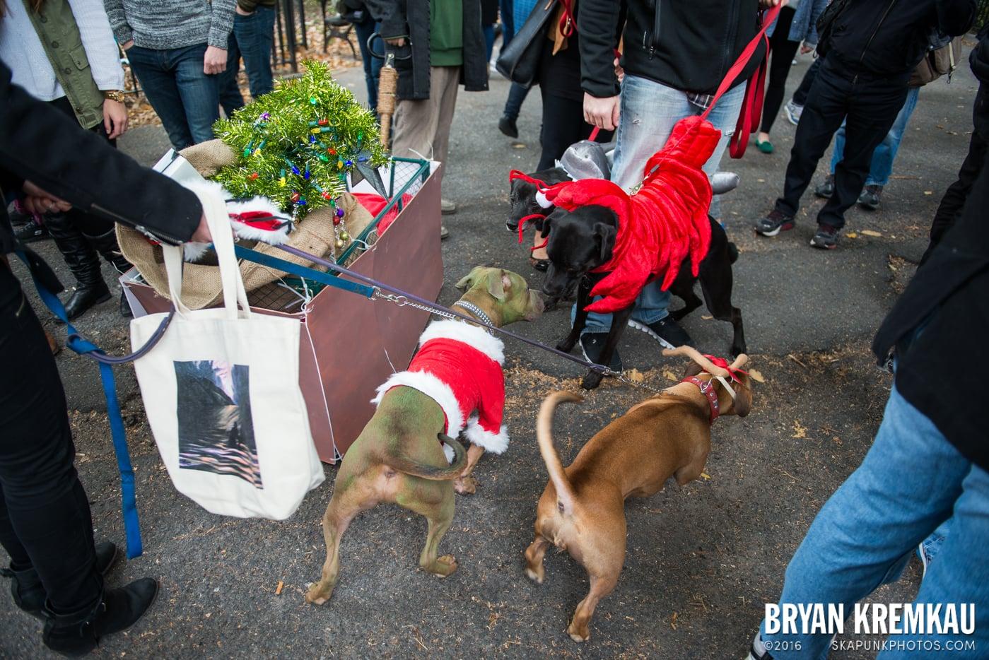 Tompkins Square Halloween Dog Parade 2015 @ Tompkins Square Park, NYC – 10.24.15 (28)
