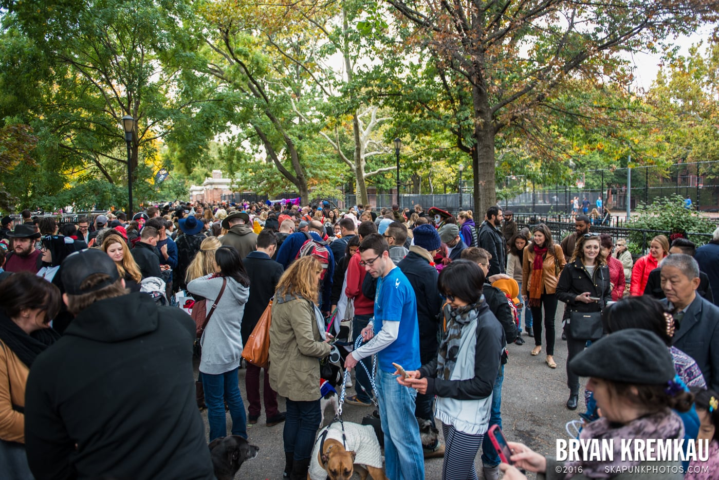 Tompkins Square Halloween Dog Parade 2015 @ Tompkins Square Park, NYC – 10.24.15 (24)