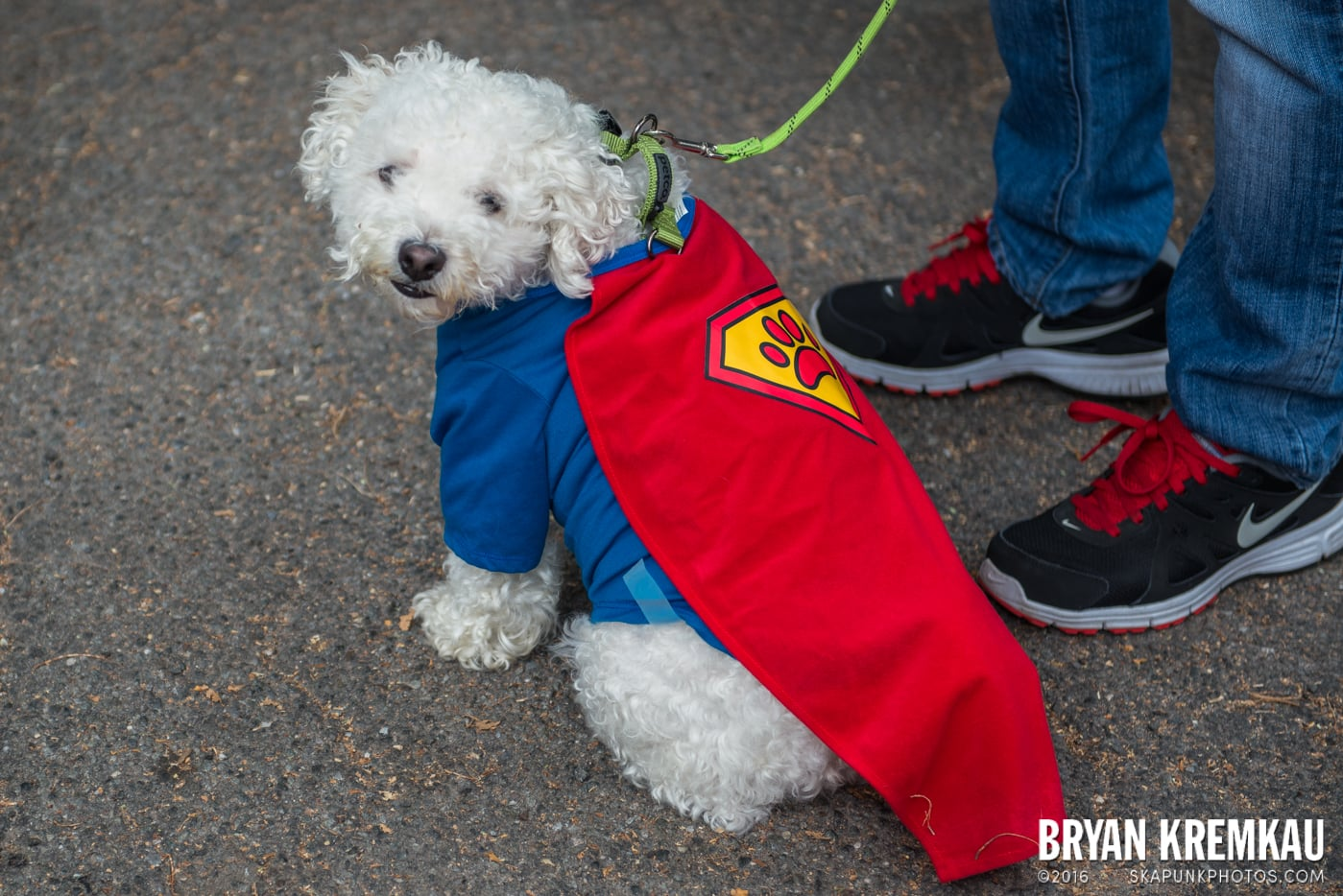Tompkins Square Halloween Dog Parade 2015 @ Tompkins Square Park, NYC – 10.24.15 (21)