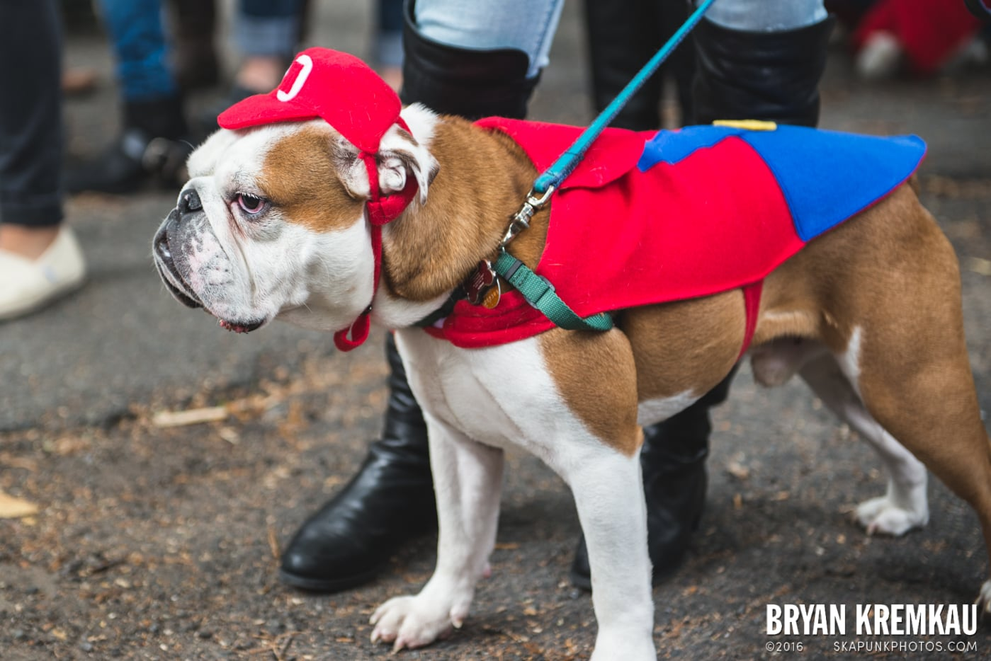 Tompkins Square Halloween Dog Parade 2015 @ Tompkins Square Park, NYC – 10.24.15 (17)