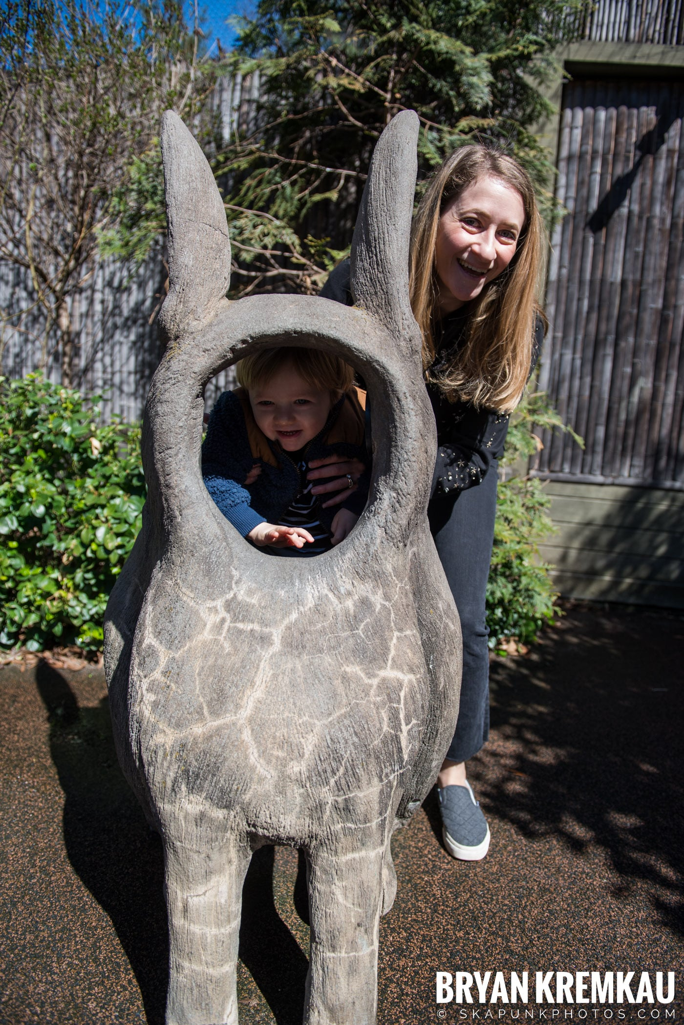 Central Park Zoo @ Central Park, NYC - 4.9.17 (31)
