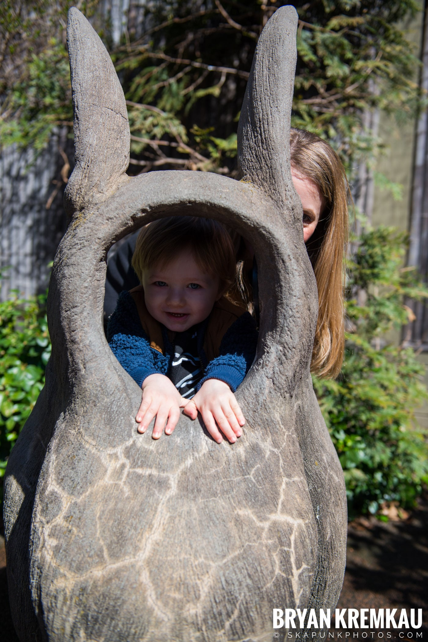 Central Park Zoo @ Central Park, NYC - 4.9.17 (30)