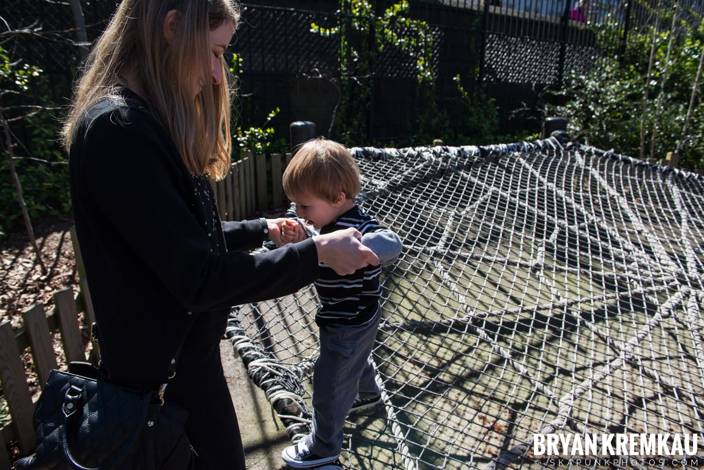 Central Park Zoo @ Central Park, NYC - 4.9.17 (27)