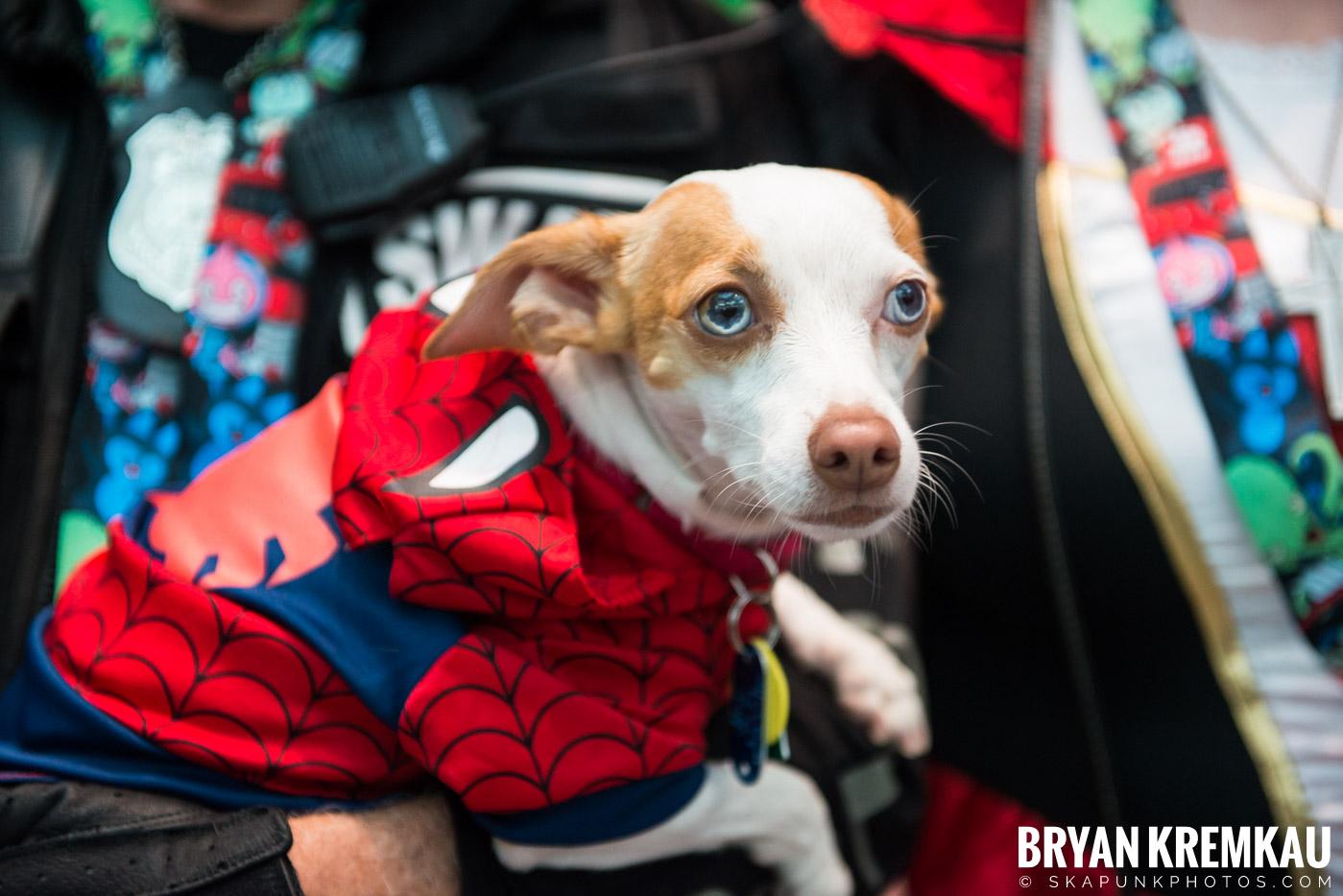 New York Comic Con 2017: Sunday – 10.8.17 (89)