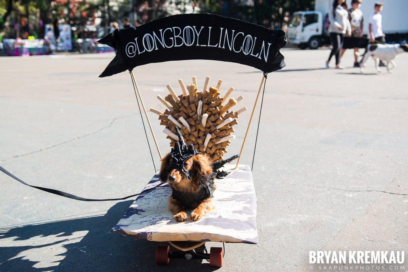 Tompkins Square Park Halloween Dog Parade 2017 @ Tompkins Square Park, NYC - 10.21.17 (51)