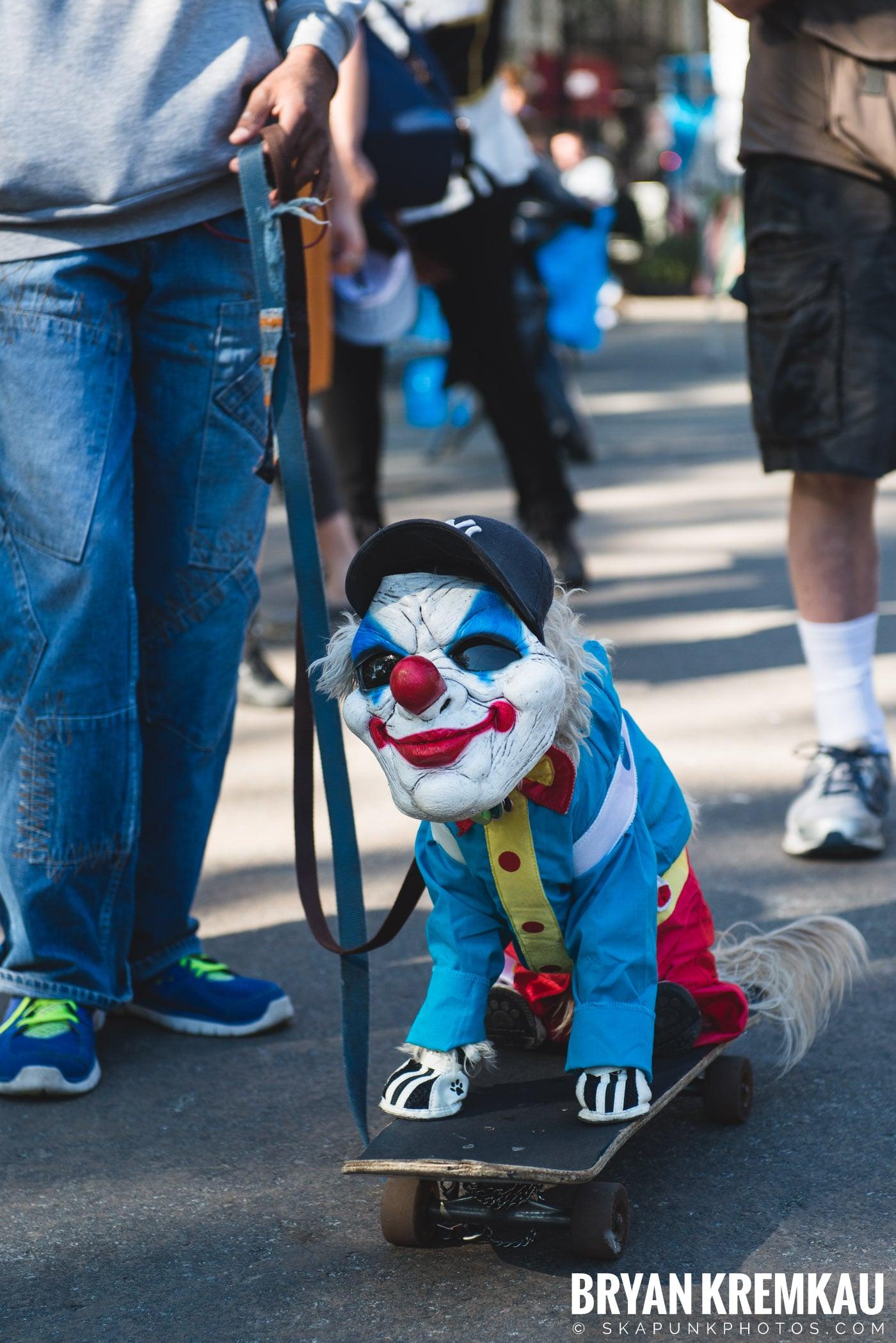 Tompkins Square Park Halloween Dog Parade 2017 @ Tompkins Square Park, NYC - 10.21.17 (50)