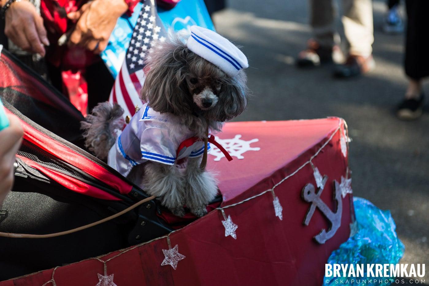 Tompkins Square Park Halloween Dog Parade 2017 @ Tompkins Square Park, NYC - 10.21.17 (45)