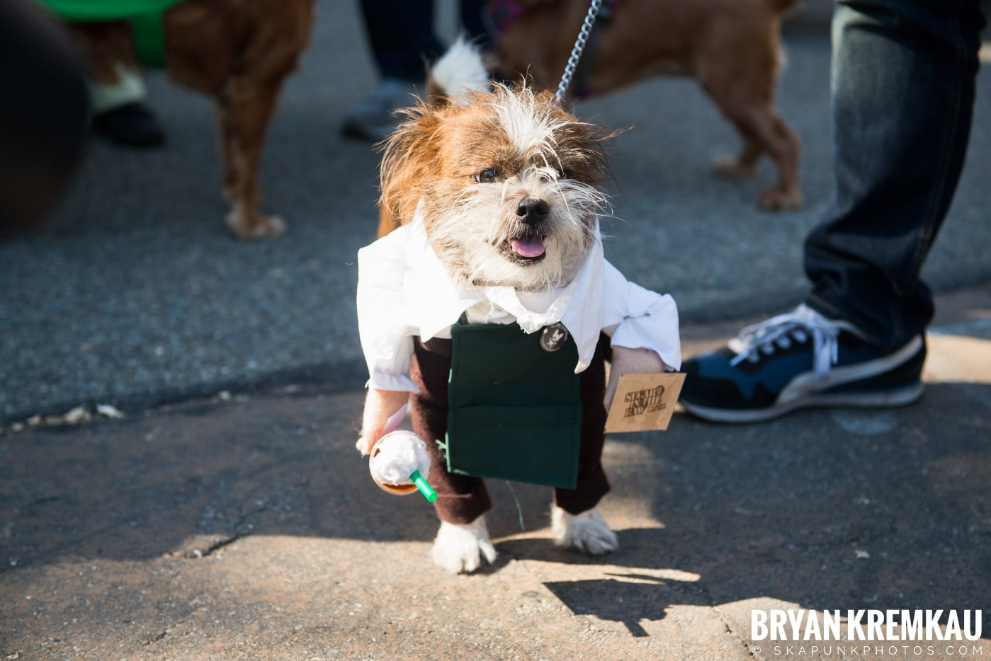 Tompkins Square Park Halloween Dog Parade 2017 @ Tompkins Square Park, NYC - 10.21.17 (38)