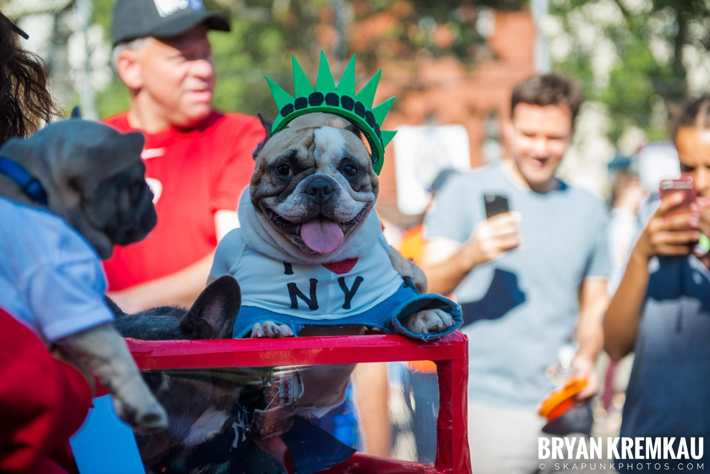 Tompkins Square Park Halloween Dog Parade 2017 @ Tompkins Square Park, NYC - 10.21.17 (34)