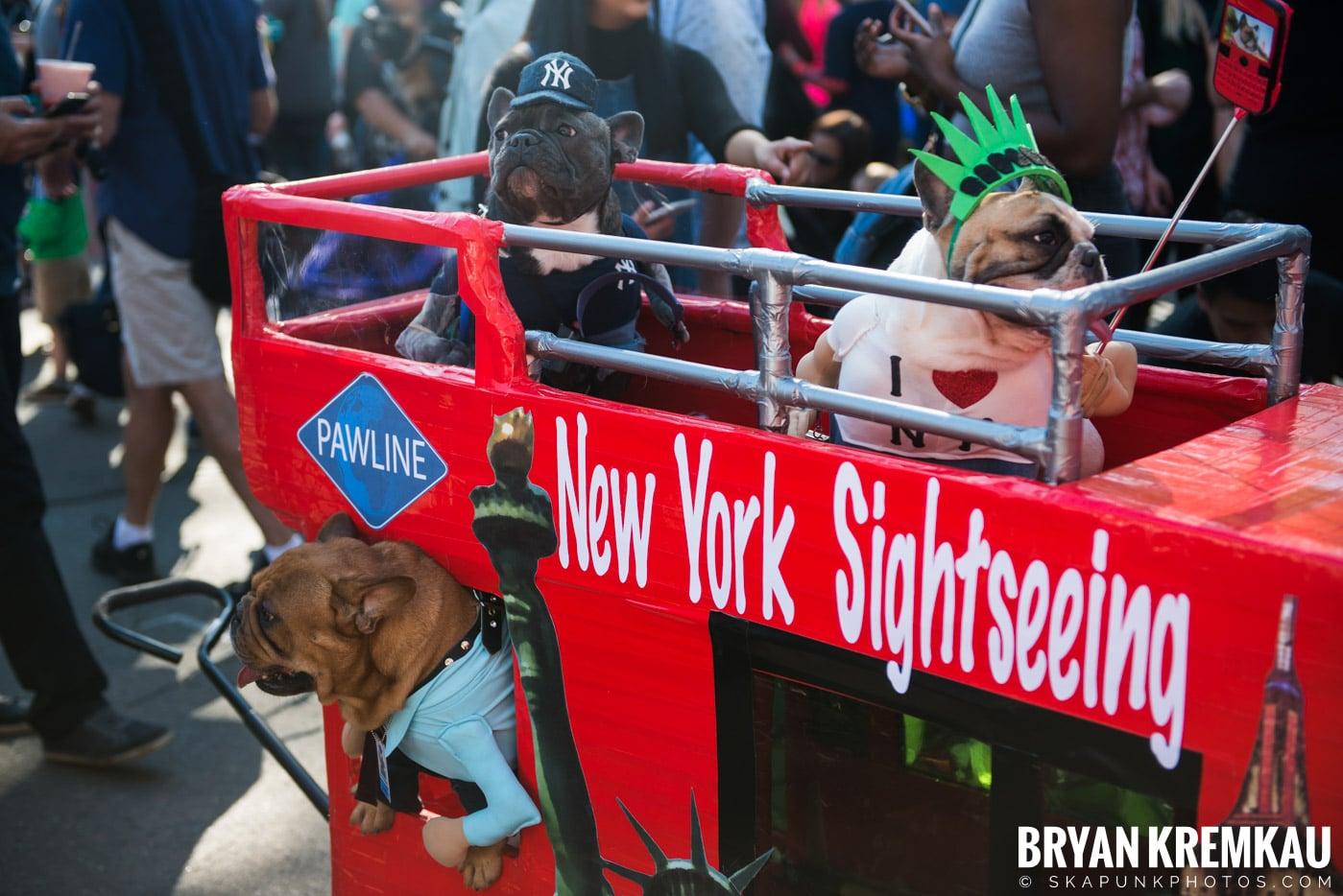 Tompkins Square Park Halloween Dog Parade 2017 @ Tompkins Square Park, NYC - 10.21.17 (29)