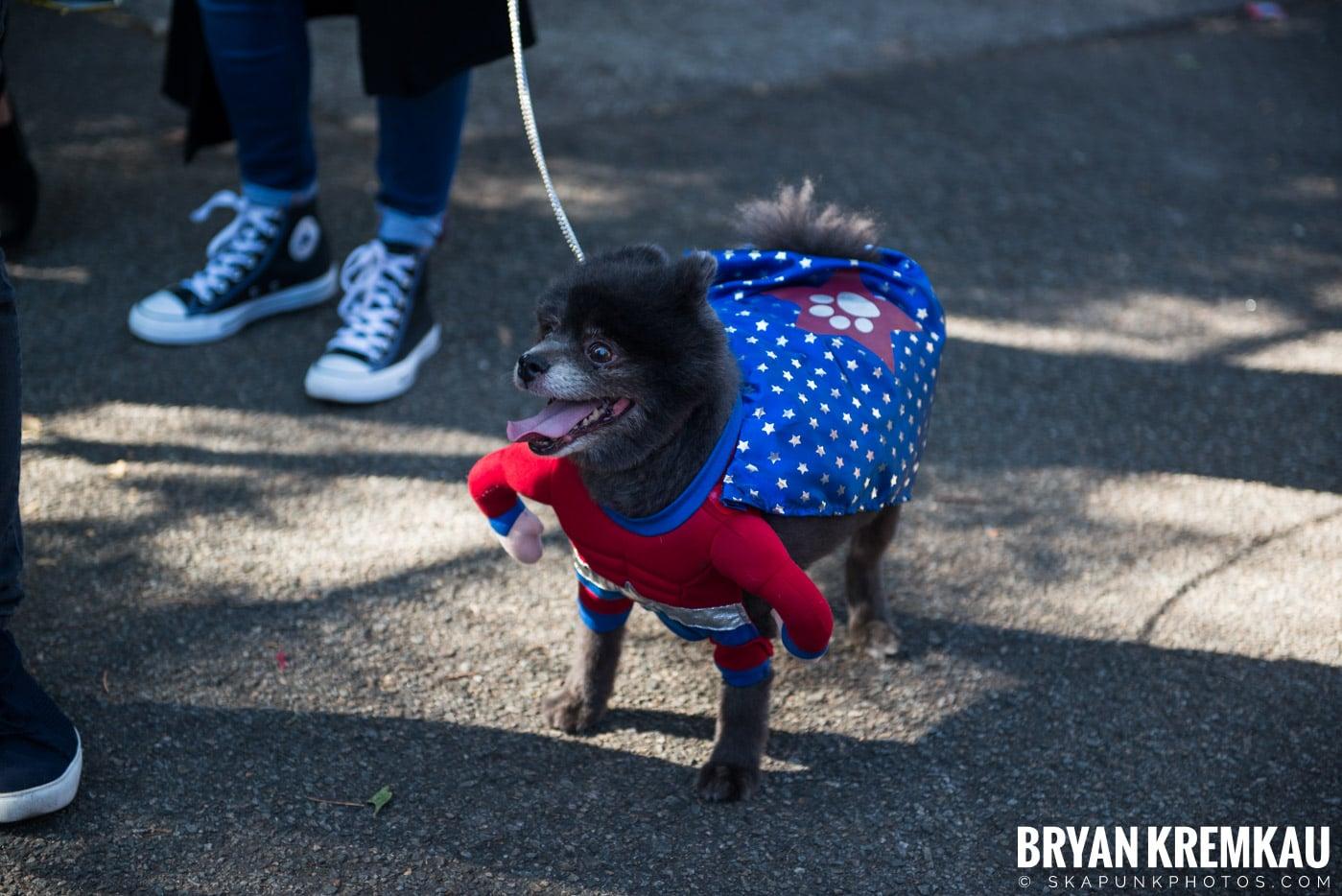 Tompkins Square Park Halloween Dog Parade 2017 @ Tompkins Square Park, NYC - 10.21.17 (25)