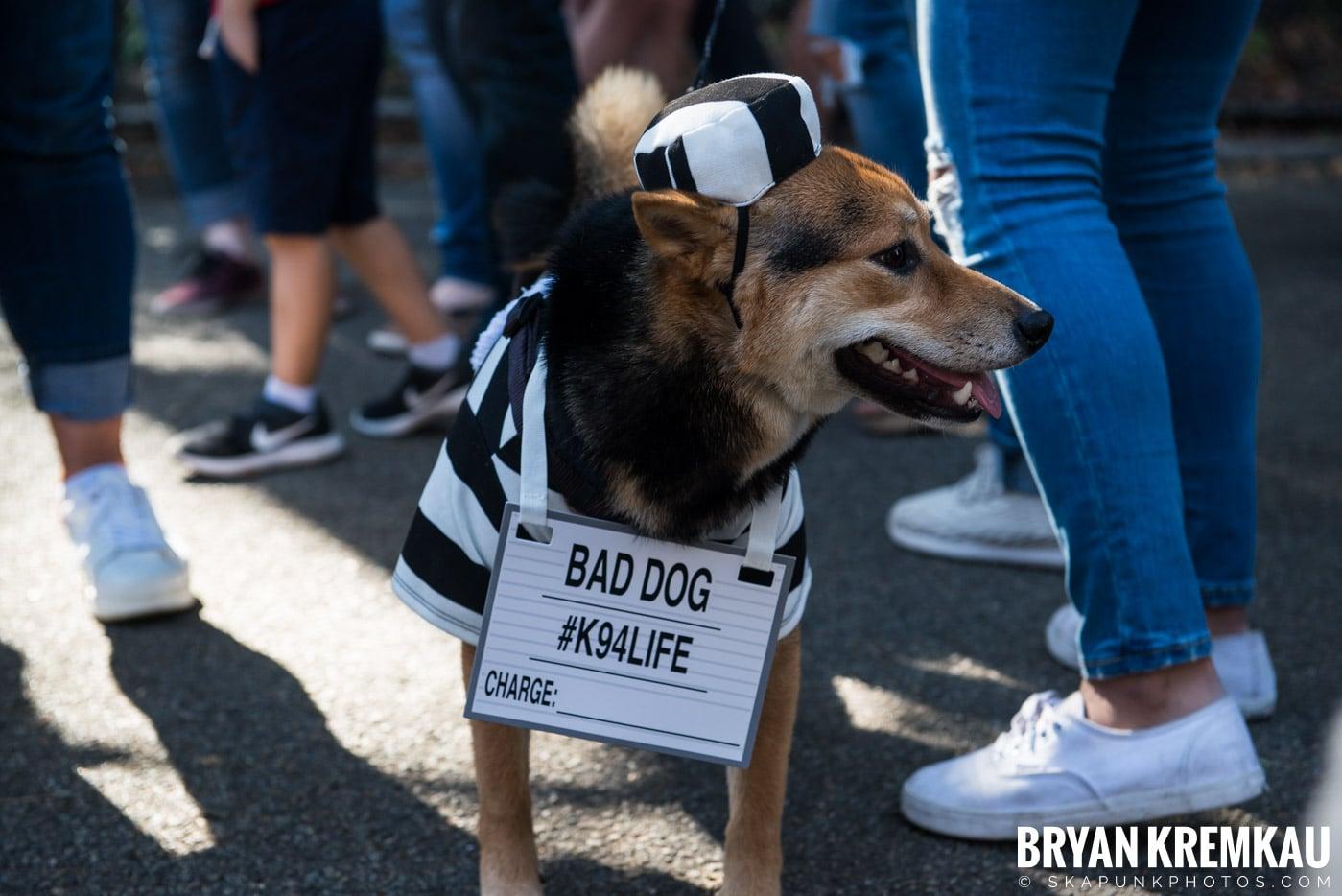 Tompkins Square Park Halloween Dog Parade 2017 @ Tompkins Square Park, NYC - 10.21.17 (18)