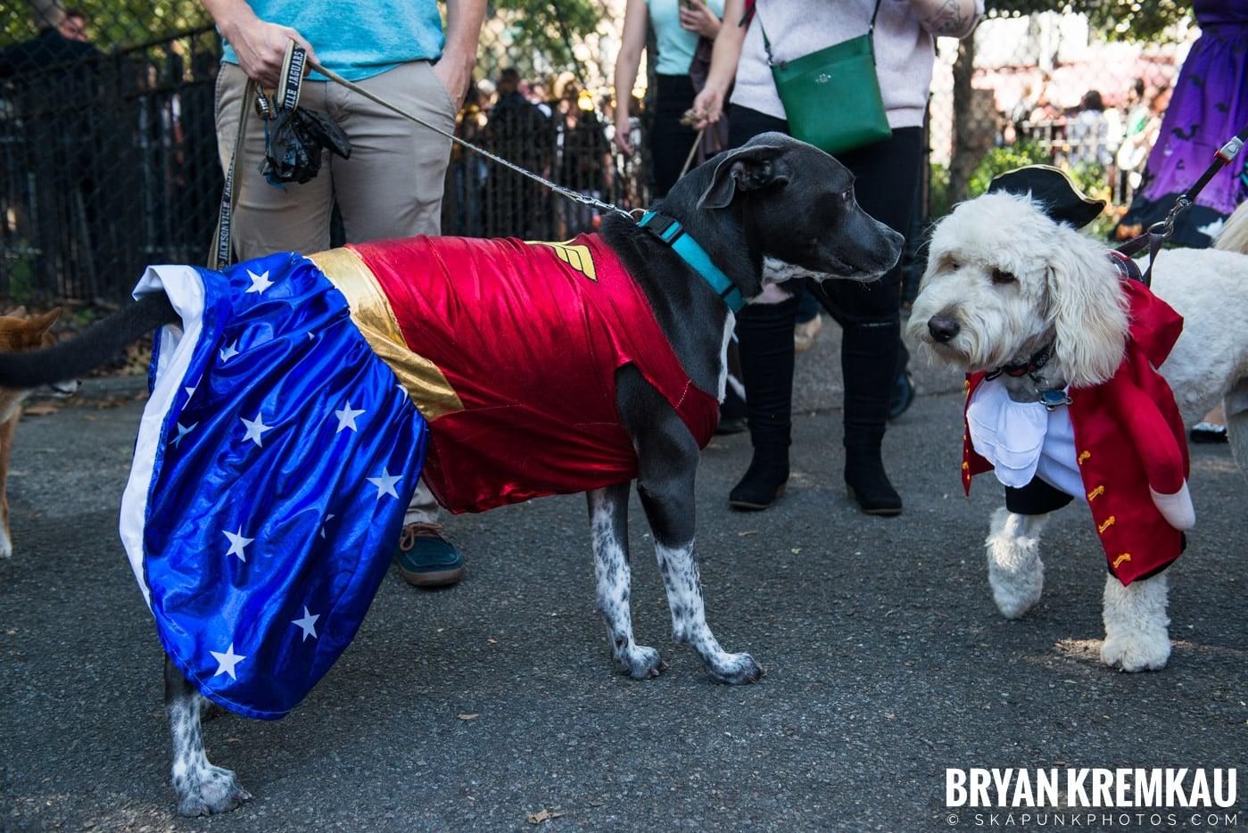 Tompkins Square Park Halloween Dog Parade 2017 @ Tompkins Square Park, NYC - 10.21.17 (14)