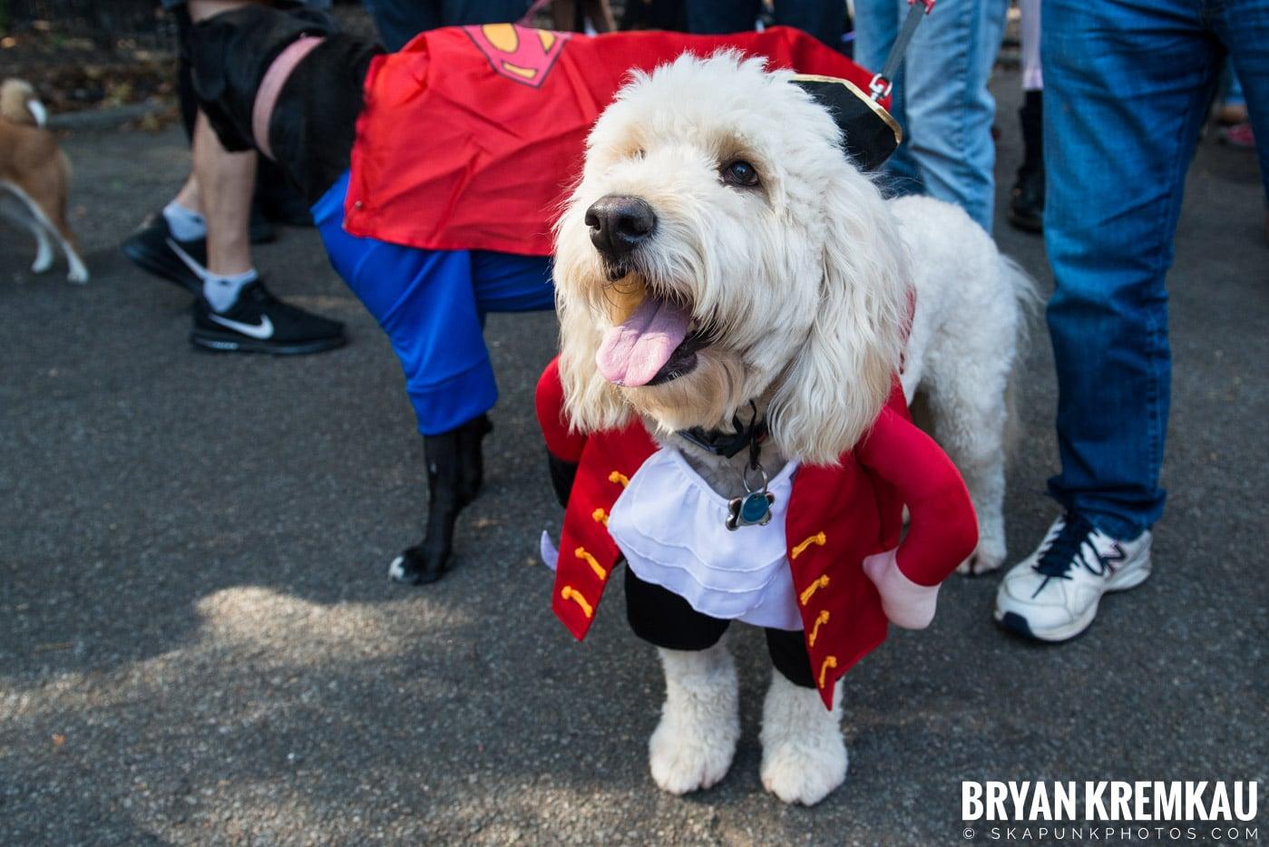 Tompkins Square Park Halloween Dog Parade 2017 @ Tompkins Square Park, NYC - 10.21.17 (13)