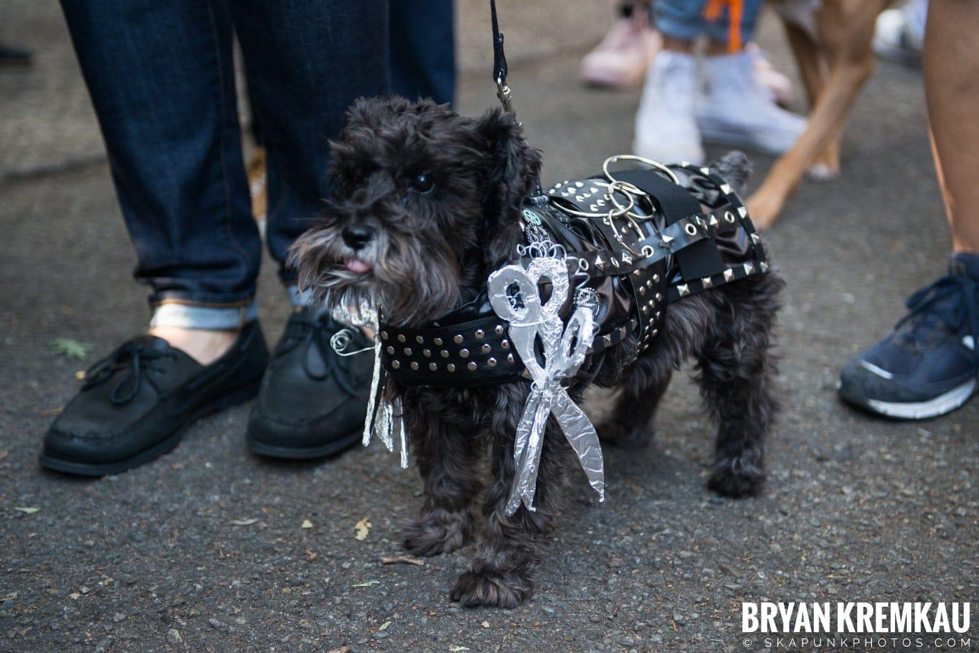 Tompkins Square Park Halloween Dog Parade 2017 @ Tompkins Square Park, NYC - 10.21.17 (7)