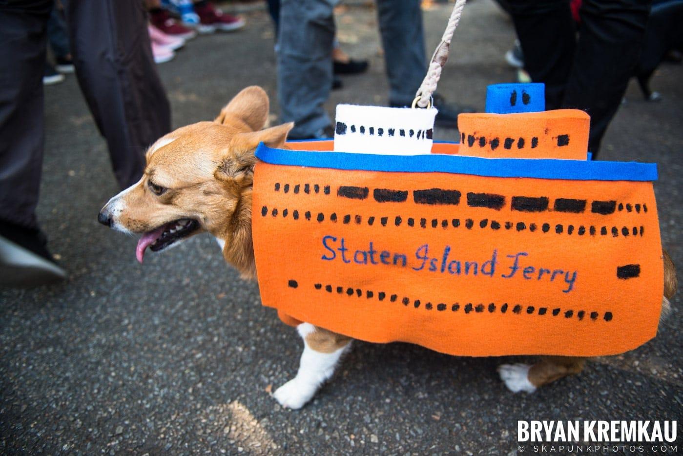 Tompkins Square Park Halloween Dog Parade 2017 @ Tompkins Square Park, NYC - 10.21.17 (6)