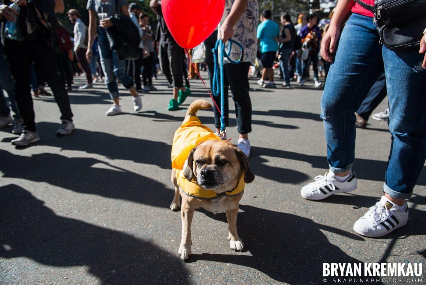 Tompkins Square Park Halloween Dog Parade 2017 @ Tompkins Square Park, NYC - 10.21.17 (2)