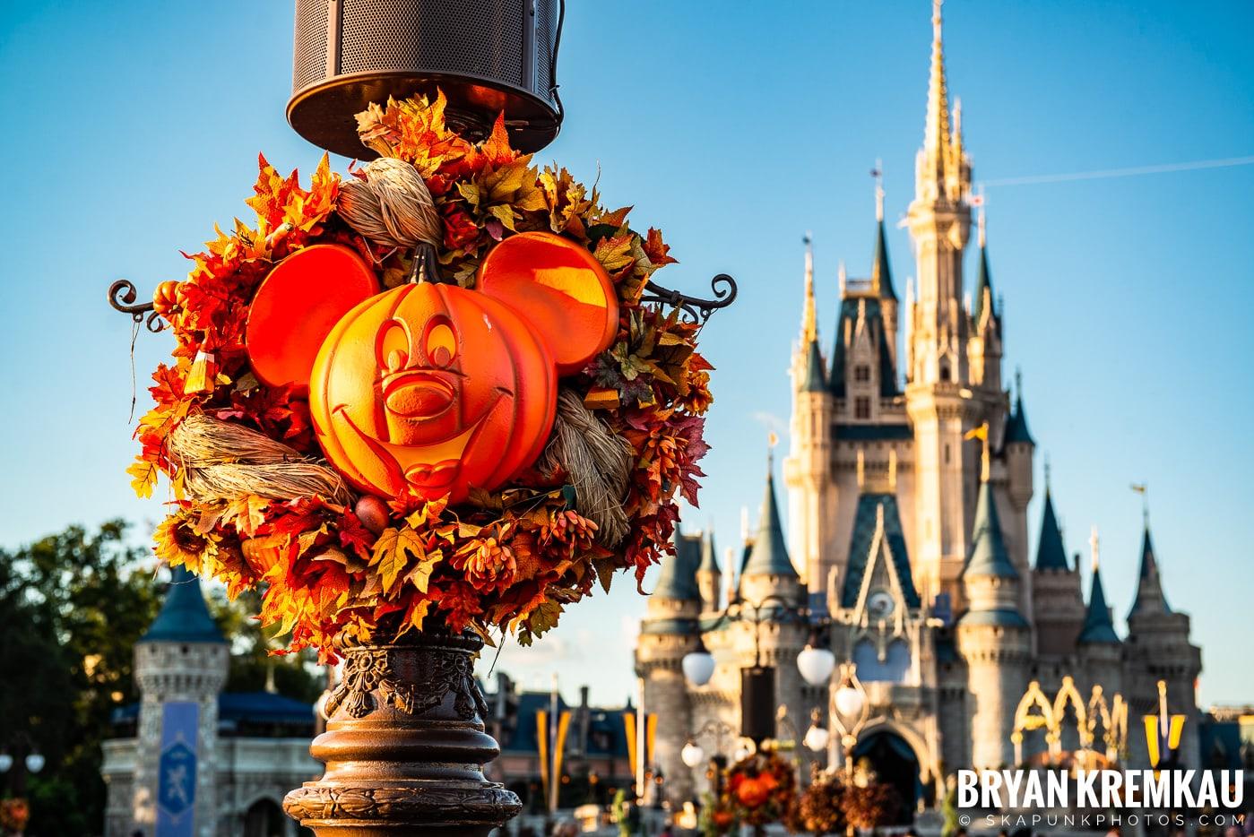 Walt Disney World Vacation: Day 3 (Disney's Hollywood Studios / Magic Kingdom) October 1st 2019 (49)