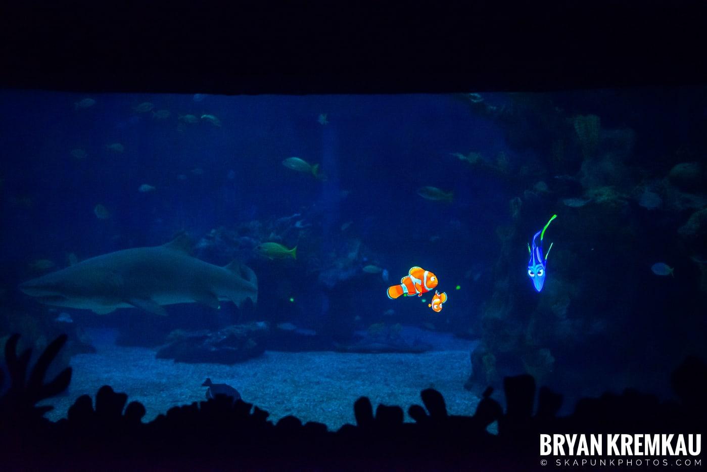 Walt Disney World Vacation: Day 4 (Epcot) October 2nd 2019 (29)