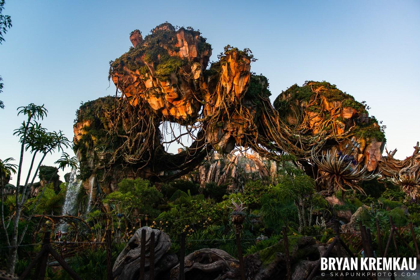 Walt Disney World Vacation: Day 5 (Animal Kingdom / Disney's Hollywood Studios) - 10.3.19 (82)