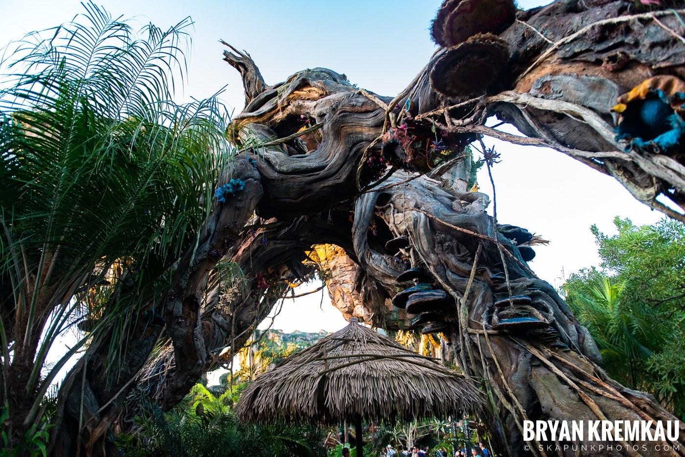 Walt Disney World Vacation: Day 5 (Animal Kingdom / Disney's Hollywood Studios) - 10.3.19 (80)