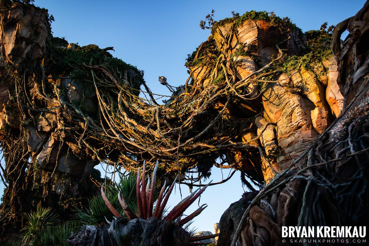 Walt Disney World Vacation: Day 5 (Animal Kingdom / Disney's Hollywood Studios) - 10.3.19 (79)