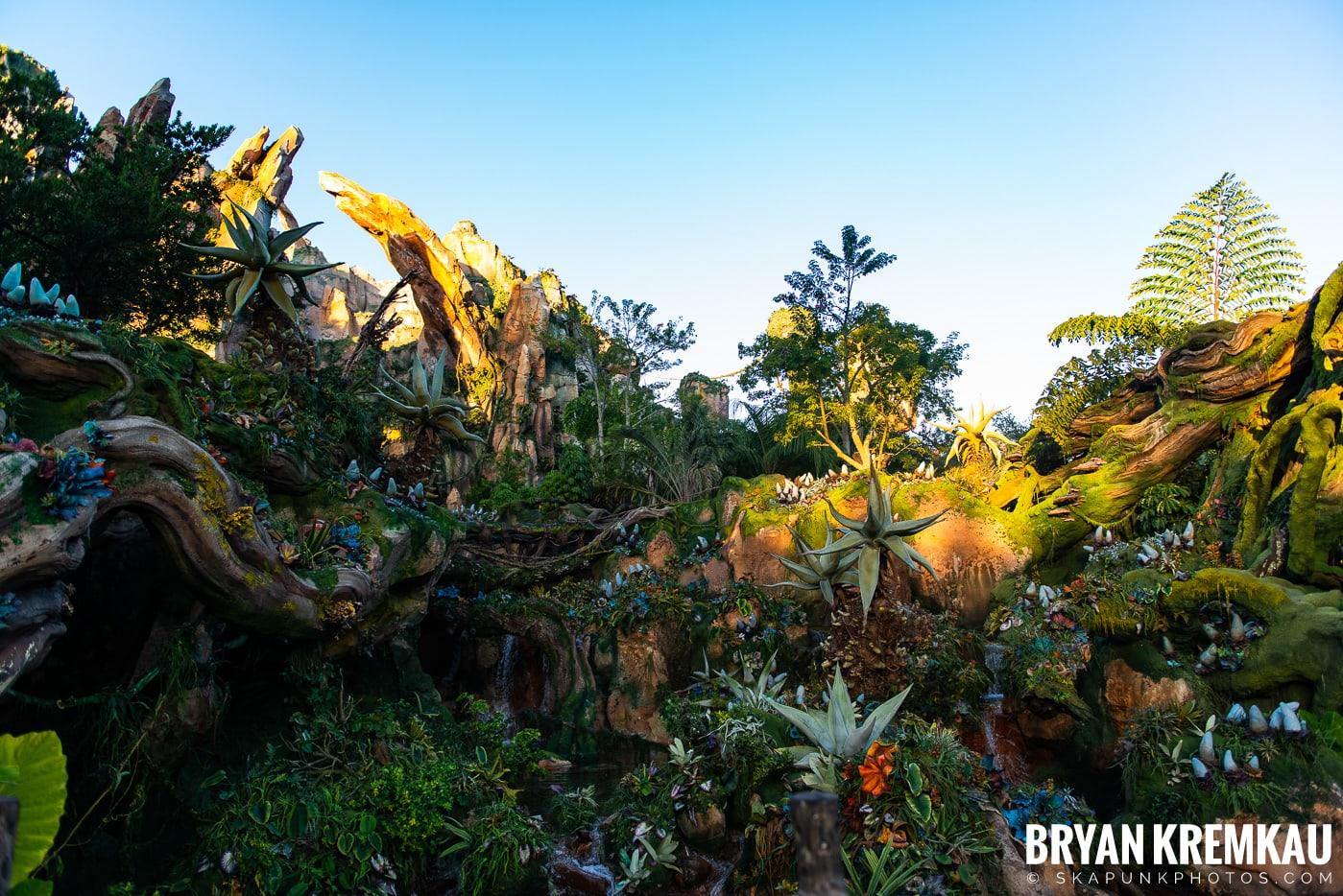 Walt Disney World Vacation: Day 5 (Animal Kingdom / Disney's Hollywood Studios) - 10.3.19 (77)