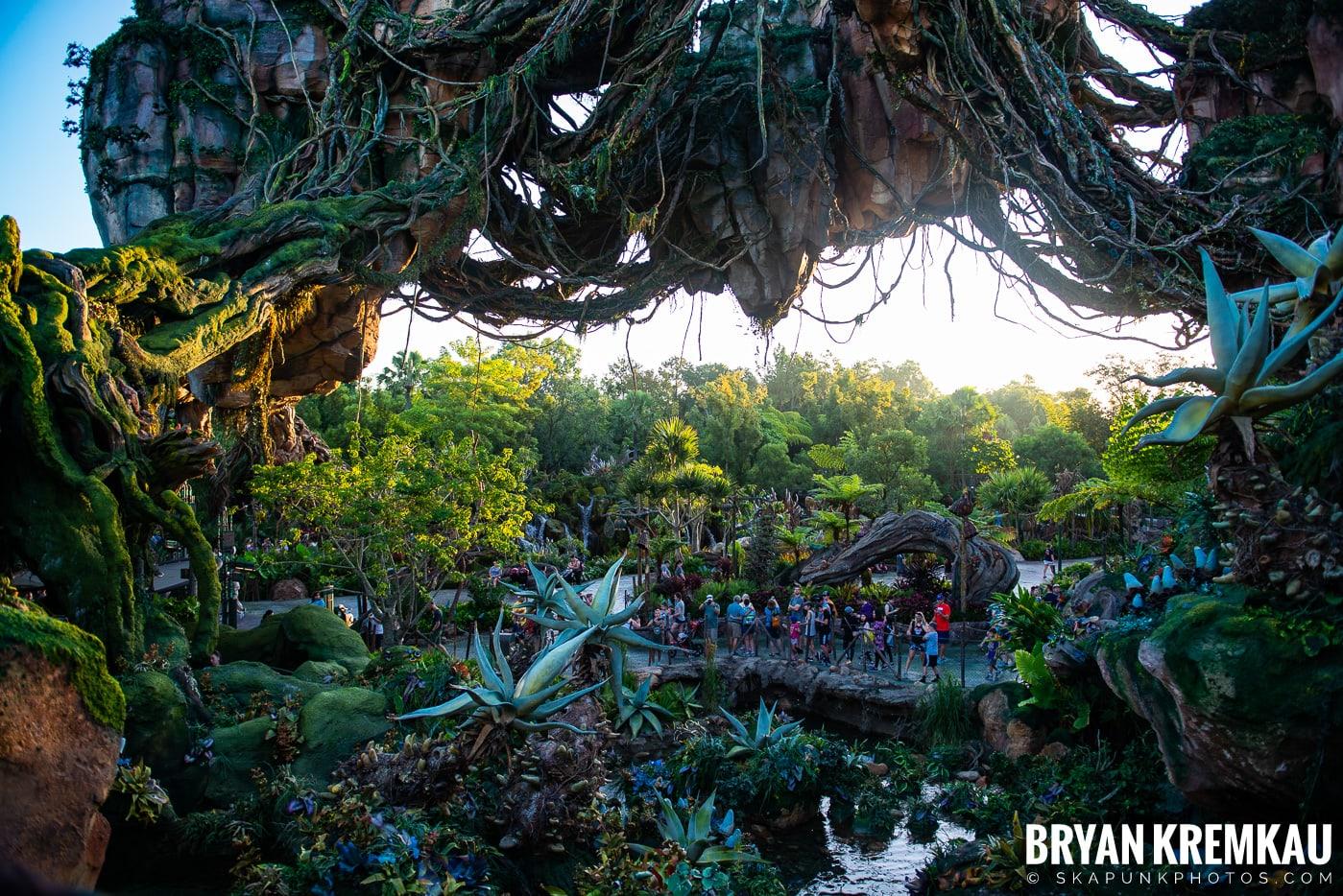 Walt Disney World Vacation: Day 5 (Animal Kingdom / Disney's Hollywood Studios) - 10.3.19 (76)
