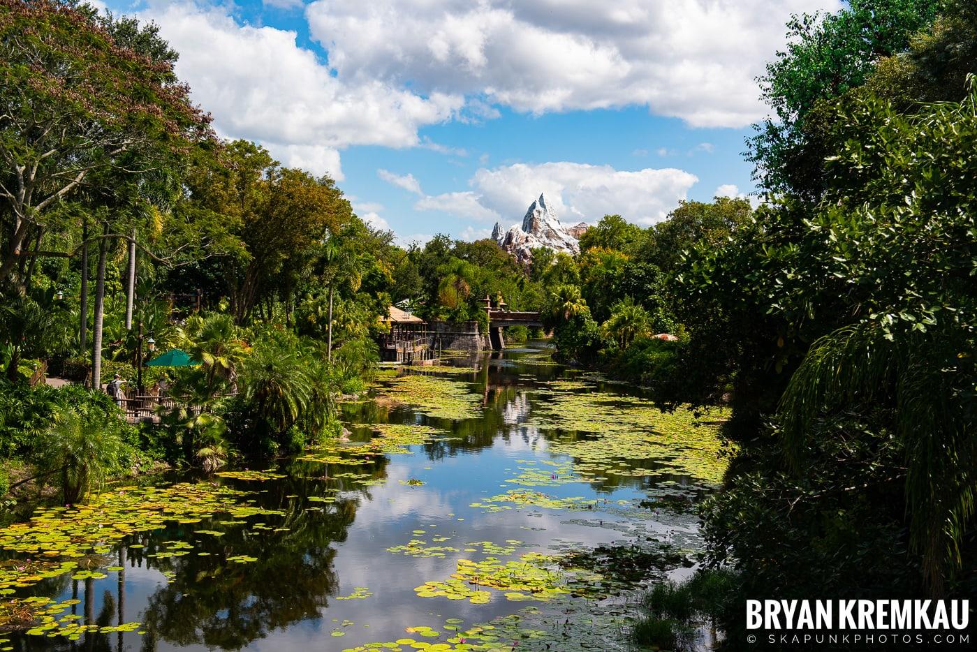 Walt Disney World Vacation: Day 5 (Animal Kingdom / Disney's Hollywood Studios) - 10.3.19 (53)