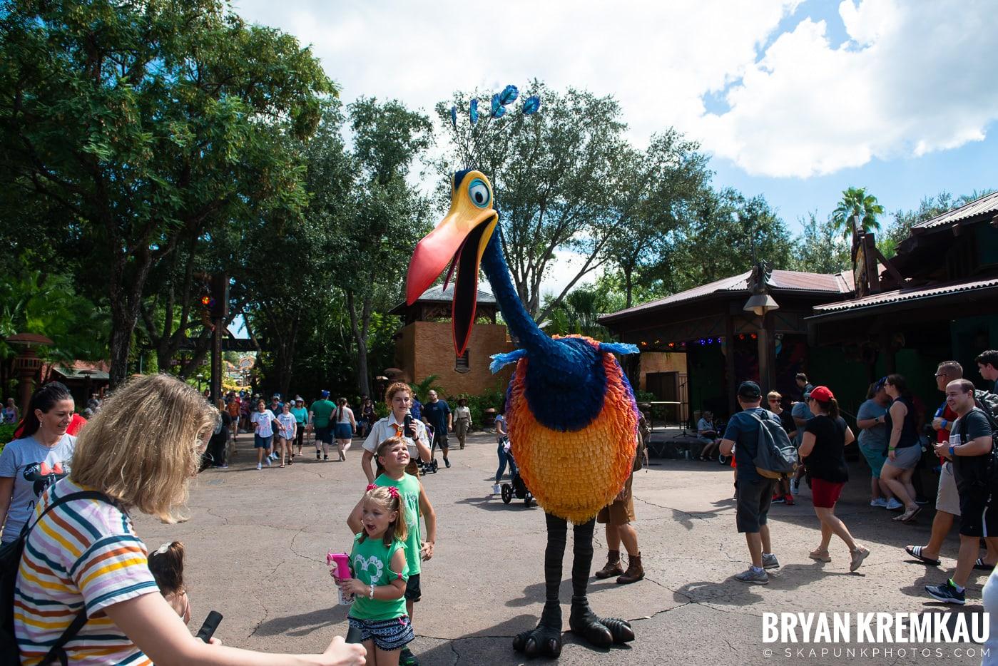 Walt Disney World Vacation: Day 5 (Animal Kingdom / Disney's Hollywood Studios) - 10.3.19 (51)