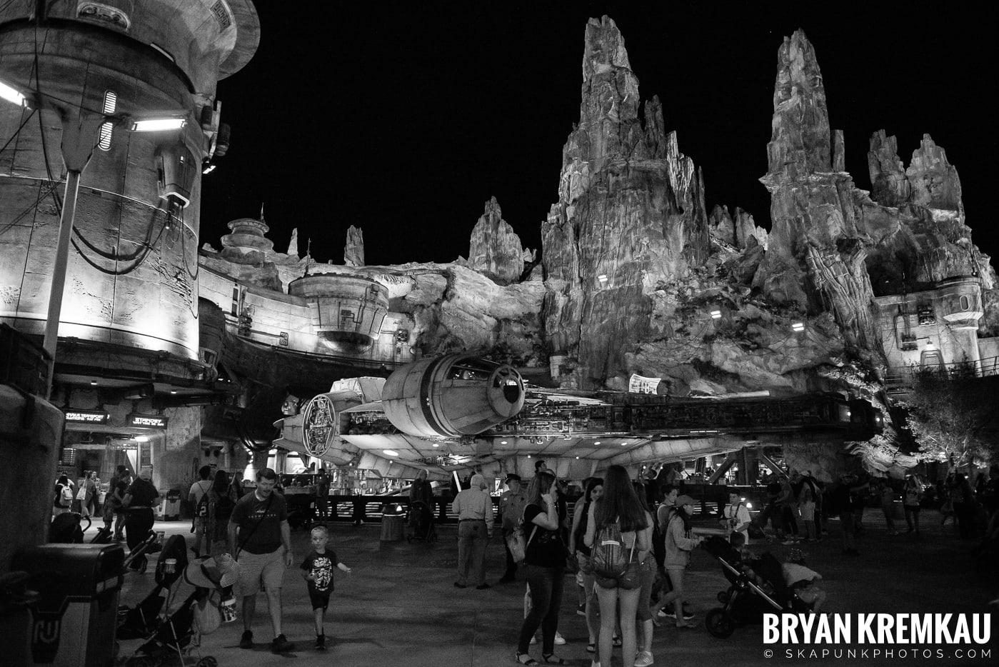 Walt Disney World Vacation: Day 5 (Animal Kingdom / Disney's Hollywood Studios) - 10.3.19 (22)