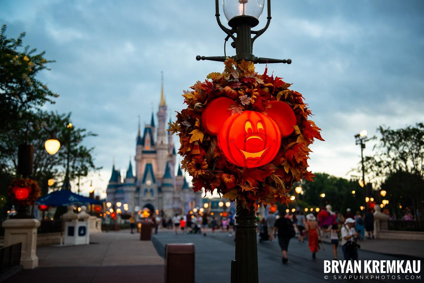 Walt Disney World Vacation: Day 6 (Magic Kingdom, Epcot, Disney's Hollywood Studios) - 10.4.19 (45)